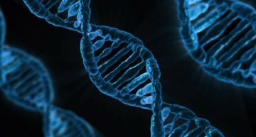 Scientists offer to sell DNA for cryptocurrency